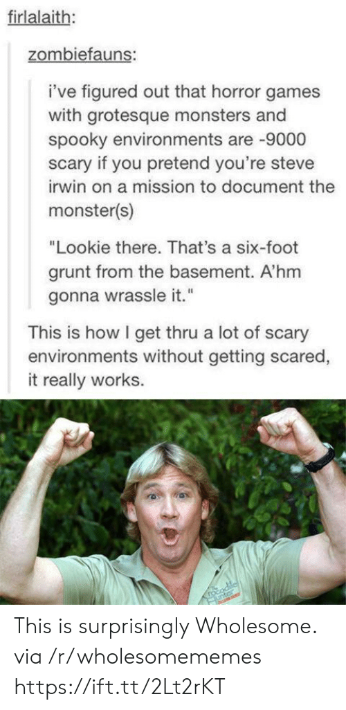 """Steve Irwin: firlalaith:  zombiefauns:  i've figured out that horror games  with grotesque monsters and  spooky environments are 9000  scary if you pretend you're steve  irwin on a mission to document the  monster(s)  """"Lookie there. That's a six-foot  grunt from the basement. A'hm  gonna wrassle it.""""  This is how I get thru a lot of scary  environments without getting scared,  it really works.  rocodile  unter This is surprisingly Wholesome. via /r/wholesomememes https://ift.tt/2Lt2rKT"""