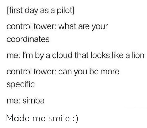 pilot: [first day as a pilot]  control tower: what are your  coordinates  me: I'm by a cloud that looks like a lion  control tower: can you be more  specific  me: simba Made me smile :)
