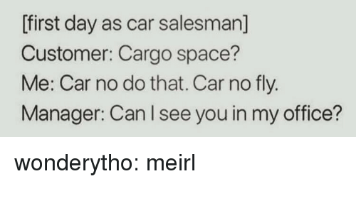 Tumblr, Blog, and Http: [first day as car salesman]  Customer: Cargo space?  Me: Car no do that. Car no fly.  Manager: Can I see you in my office? wonderytho:  meirl