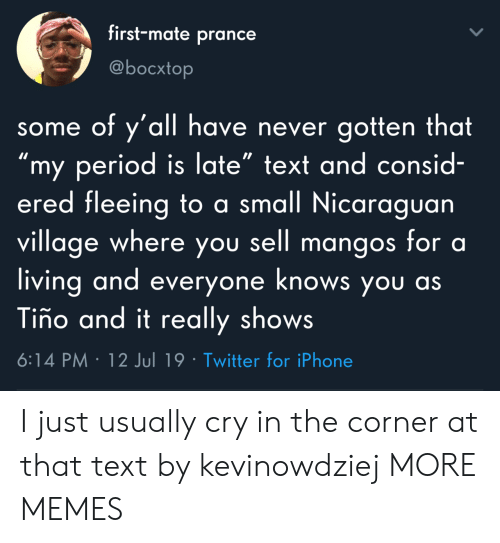 """Dank, Iphone, and Memes: first-mate prance  @bocxtop  some of y'all have never gotten that  """"my period is late"""" text and consid-  ered fleeing to a small Nicaraguan  village where you sell mangos for a  living and everyone knows you as  Tiño and it really shows  6:14 PM 12 Jul 19 Twitter for iPhone I just usually cry in the corner at that text by kevinowdziej MORE MEMES"""
