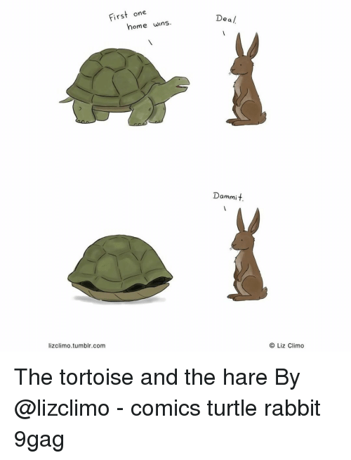 Lizclimo Tumblr: First one  Dea /  home wins  Dammit.  lizclimo.tumblr.com  O Liz Climo The tortoise and the hare⠀ By @lizclimo⠀ -⠀ comics turtle rabbit 9gag
