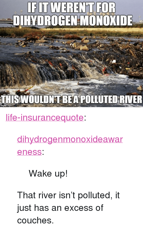 """Life, Tumblr, and Blog: FITWEREN'T FOR  DIHYDROGEN MONOXIDE  THISWOULDNT BEA POLLUTED RIVER  mgfip.com <p><a href=""""http://life-insurancequote.tumblr.com/post/151351832316/dihydrogenmonoxideawareness-wake-up"""" class=""""tumblr_blog"""">life-insurancequote</a>:</p><blockquote> <p><a href=""""http://dihydrogenmonoxideawareness.tumblr.com/post/150373293537/wake-up"""" class=""""tumblr_blog"""">dihydrogenmonoxideawareness</a>:</p>  <blockquote><p>  Wake up!  <br/></p></blockquote>  <p>That river isn't polluted, it just has an excess of couches.</p> </blockquote>"""