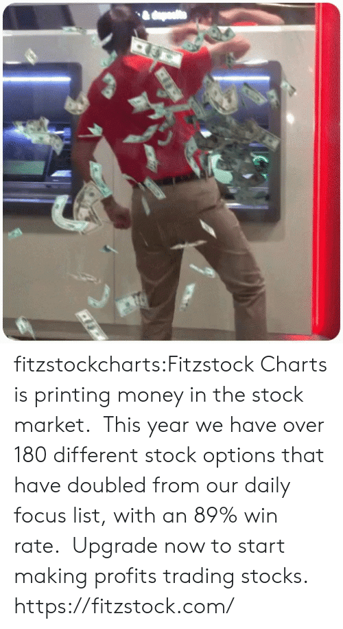 Money, Tumblr, and Blog: fitzstockcharts:Fitzstock Charts is printing money in the stock market.  This year we have over 180 different stock options that have doubled from our daily focus list, with an 89% win rate.  Upgrade now to start making profits trading stocks.  https://fitzstock.com/