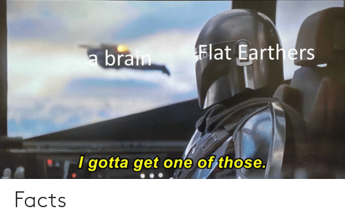 Flat: Flat Earthers  a brain  I gotta get one of those. Facts