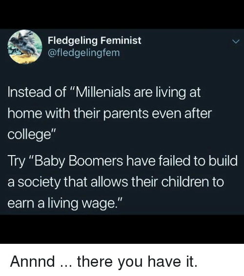 """Children, College, and Memes: Fledgeling Feminist  @fledgelingfem  Instead of """"Millenials are living at  home with their parents even after  college""""  Try """"Baby Boomers have failed to build  a society that allows their children to  earn a living wage."""" Annnd ... there you have it."""