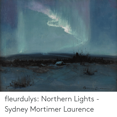 sydney: fleurdulys: Northern Lights - Sydney Mortimer Laurence