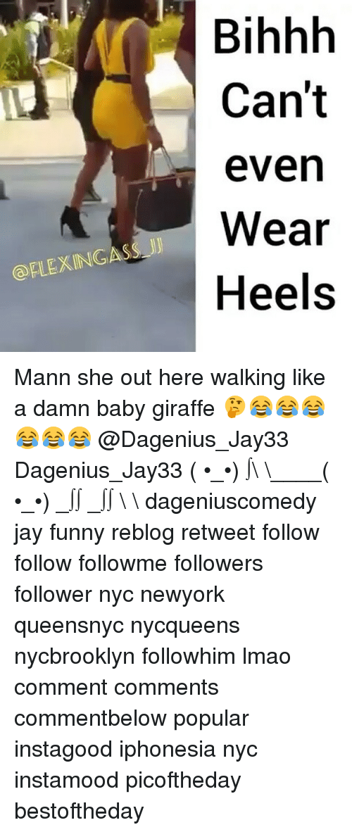 evening wear: FLEXINGASS JJ  Bihhh  Can't  even  Wear  Heels Mann she out here walking like a damn baby giraffe 🤔😂😂😂😂😂😂 @Dagenius_Jay33 Dagenius_Jay33 ( •_•) ∫\ \____( •_•) _∫∫ _∫∫ɯ \ \ dageniuscomedy jay funny reblog retweet follow follow followme followers follower nyc newyork queensnyc nycqueens nycbrooklyn followhim lmao comment comments commentbelow popular instagood iphonesia nyc instamood picoftheday bestoftheday