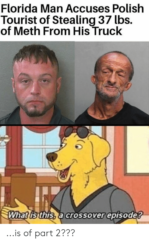 Tourist: Florida Man Accuses Polish  Tourist of Stealing 37 lbs.  of Meth From His Truck  What isithis, a crossover episode? ...is of part 2???
