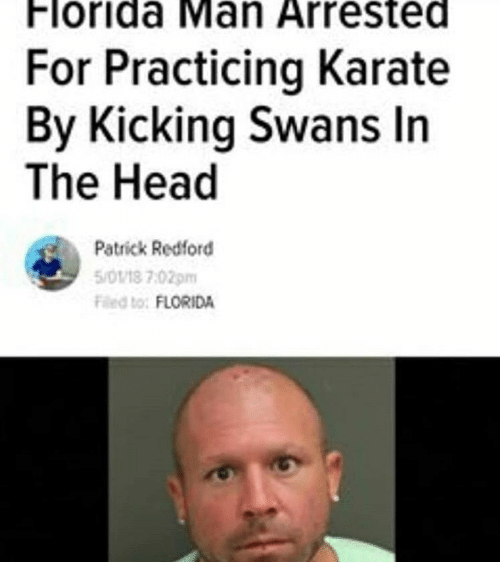 swans: Florida Man Arrested  For Practicing Karate  By Kicking Swans In  The Head  Patrick Redford  5/0118 7:02pm  Fed to: FLORIDA
