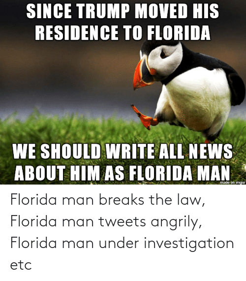 Tweets: Florida man breaks the law, Florida man tweets angrily, Florida man under investigation etc