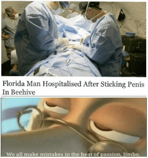 Florida Man: Florida Man Hospitalised After Sticking Penis  In Beehive  We all make  mistakes in the heat of passion, Jimbo.