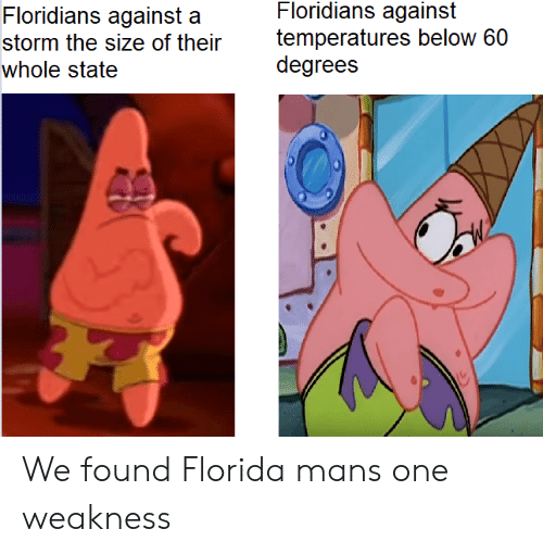 weakness: Floridians against  temperatures below 60  degrees  Floridians against a  storm the size of their  whole state We found Florida mans one weakness