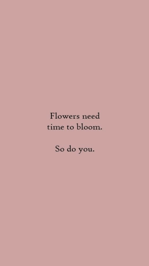 Flowers, Time, and You: Flowers need  time to bloom  So do you.