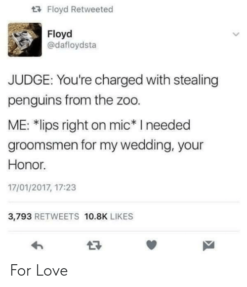 """Penguins: Floyd Retweeted  Floyd  @dafloydsta  JUDGE: You're charged with stealing  penguins from the zoo.  ME: 치ips right on mic"""" I needed  groomsmen for my wedding, your  Honor.  17/01/2017, 17:23  3,793 RETWEETS 10.8K LIKES For Love"""