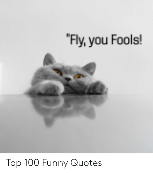 top 100: Fly,you Fools! Top 100 Funny Quotes