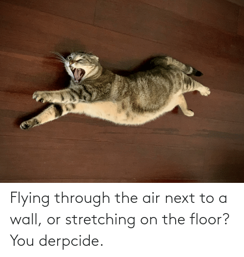 Flying Through: Flying through the air next to a wall, or stretching on the floor? You derpcide.