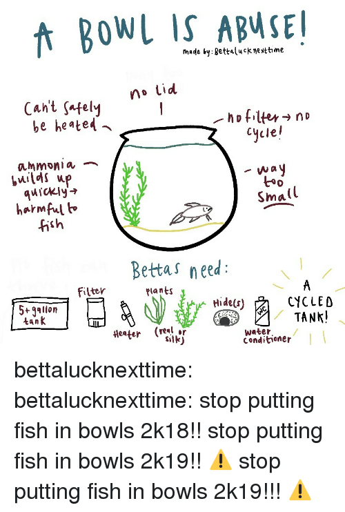 Tumblr, Blog, and Fish: fnade by gettalucknettime  no Lid  Cant safelvy  be heated  Cycle!  ammonia ︷  quickly'  harmful h  fish  t*  Small  Bettas need  filter  Plants  5+gallon  tank  CYCLED  (real or  water  Conditioner bettalucknexttime:  bettalucknexttime:  stop putting fish in bowls 2k18!!  stop putting fish in bowls 2k19!!  ⚠️ stop putting fish in bowls 2k19!!! ⚠️