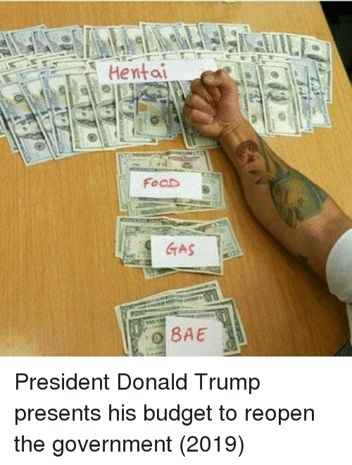 Bae, Donald Trump, and Budget: FoaDs  GTAS  BAE President Donald Trump presents his budget to reopen the government (2019)