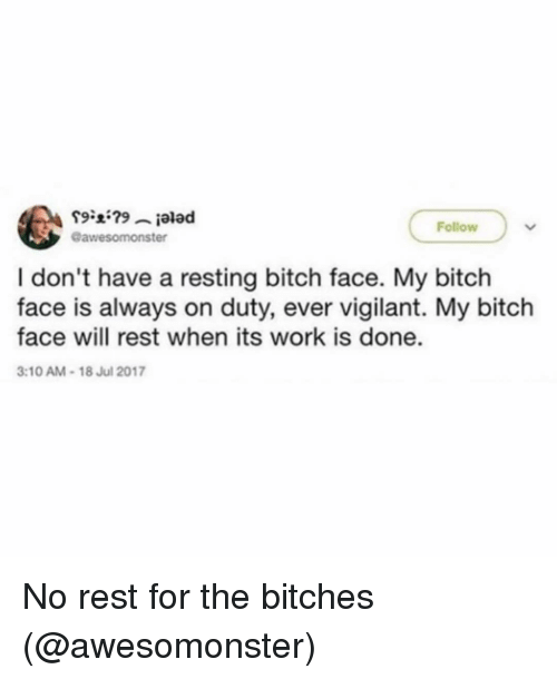 Bitch, Memes, and Work: Follow  @awesomonster  I don't have a resting bitch face. My bitch  face is always on duty, ever vigilant. My bitch  face will rest when its work is done.  3:10 AM-18 Jul 2017 No rest for the bitches (@awesomonster)