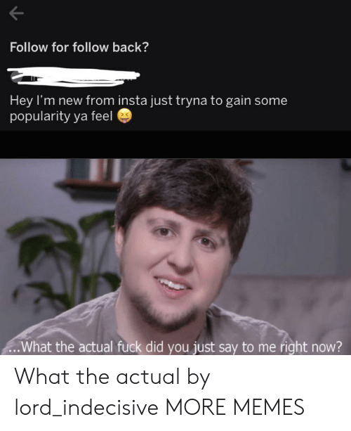 Me Right Now: Follow for follow back?  Hey I'm new from insta just tryna to gain some  popularity ya feel  .What the actual fuck did you just say to me right now? What the actual by lord_indecisive MORE MEMES