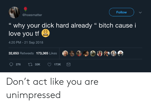 """Bitch, Love, and I Love You: Follow  @hoesmatter  why your dick hard already """" bitch cause i  love you tf  4:20 PM -21 Sep 2018  32,653 Retweets 173,365 Likes  Li33K  276  173K Don't act like you are unimpressed"""