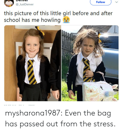 School, Tumblr, and Blog: Follow  @JustDenver  this picture of this little girl before and after  school has me howling f mysharona1987:  Even the bag has passed out from the stress.