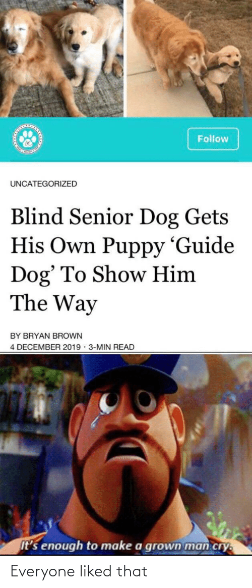 guide: Follow  UNCATEGORIZED  Blind Senior Dog Gets  His Own Puppy 'Guide  Dog' To Show Him  The Way  BY BRYAN BROWN  4 DECEMBER 2019 · 3-MIN READ  It's enough to make a grown man cry. Everyone liked that