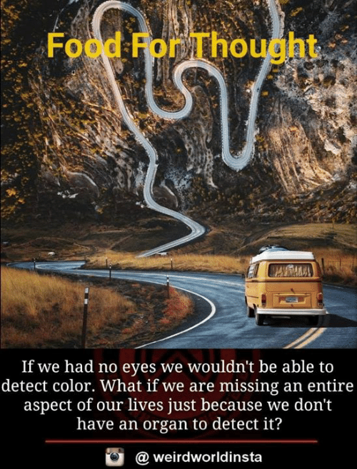 Food, Memes, and Thought: Food For Thought*  If we had no eyes we wouldn't be able to  detect color. What if we are missing an entire  aspect of our lives just because we don't  have an organ to detect it?  weirdworldinsta