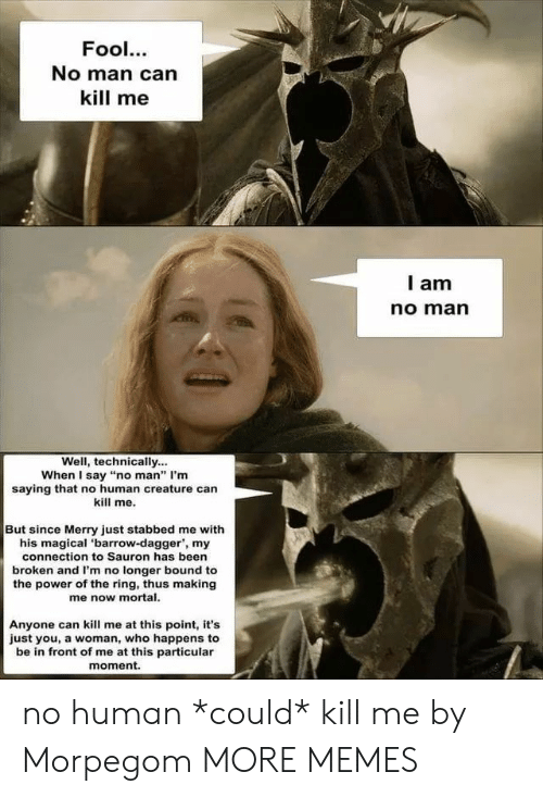 "Dank, Memes, and Target: Fool.  No man can  kill me  I am  no marn  Well, technically...  When I say ""no man"" I'm  saying that no human creature can  kill me.  But since Merry just stabbed me with  his magical 'barrow-dagger, my  connection to Sauron has been  broken and I'm no longer bound to  the power of the ring, thus making  me now mortal  Anyone can kill me at this point, it's  just you, a woman, who happens to  be in front of me at this particular  moment. no human *could* kill me by Morpegom MORE MEMES"