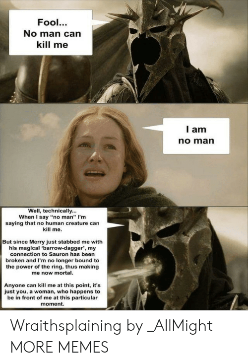 "Dank, Memes, and Target: Fool.  No man can  kill me  l am  no marn  Well, technically...  When I say ""no man"" I'm  saying that no human creature can  kill me.  But since Merry just stabbed me with  his magical 'barrow-dagger', my  connection to Sauron has been  broken and I'm no longer bound to  the power of the ring, thus making  me now mortal.  Anyone can kill me at this point, it's  just you, a woman, who happens to  be in front of me at this particular  moment. Wraithsplaining by _AllMight MORE MEMES"