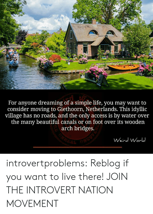 simple life: For anyone dreaming of a simple life, you may want to  consider moving to Giethoorn, Netherlands. This idyllic  village has no roads, and the only access is by water over  the many beautiful canals or on foot over its wooden  arch bridges.  Weird Worl introvertproblems:  Reblog if you want to live there! JOIN THE INTROVERT NATION MOVEMENT