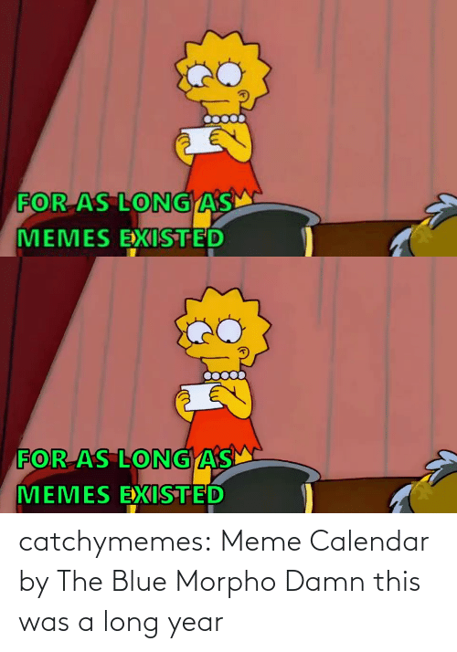 user: FOR AS LONG AS  MEMES EXISTED   FOR AS LONGAS  MEMES EXISTED catchymemes:  Meme Calendar by The Blue Morpho   Damn this was a long year