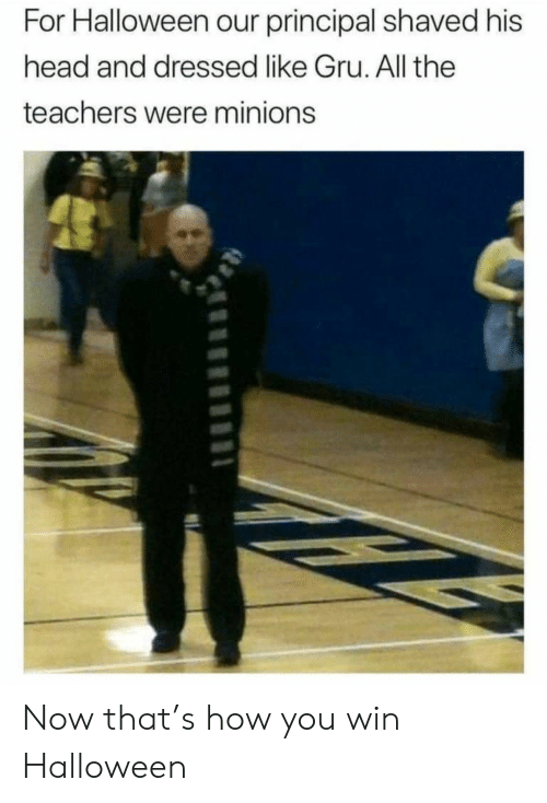 Minions: For Halloween our principal shaved his  head and dressed like Gru. All the  teachers were minions Now that's how you win Halloween