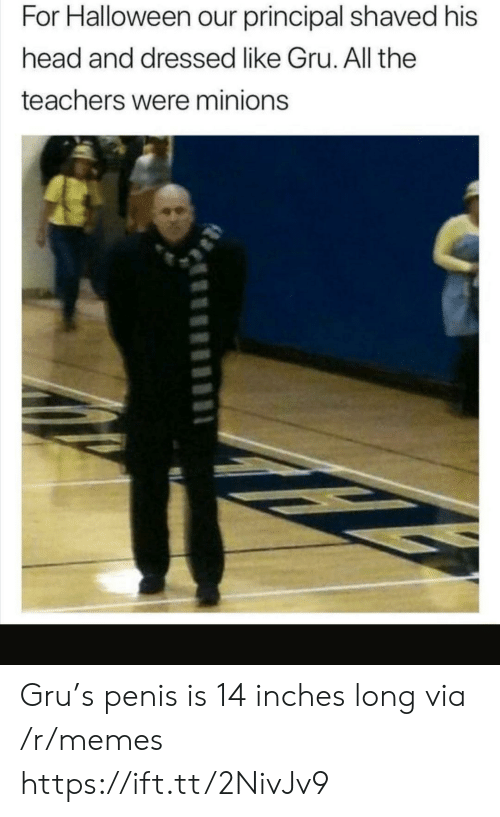 Minions: For Halloween our principal shaved his  head and dressed like Gru. All the  teachers were minions Gru's penis is 14 inches long via /r/memes https://ift.tt/2NivJv9