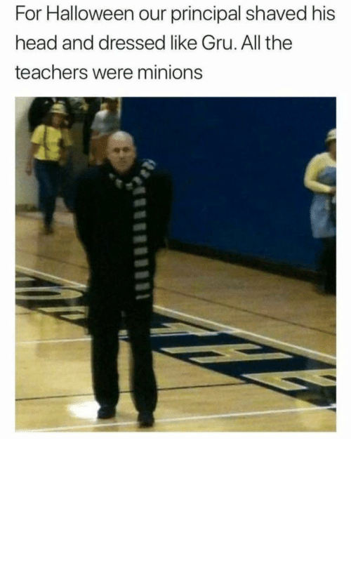 Minions: For Halloween our principal shaved his  head and dressed like Gru. All the  teachers were minions Now that's how you win Halloween by ashutosh__badetia MORE MEMES