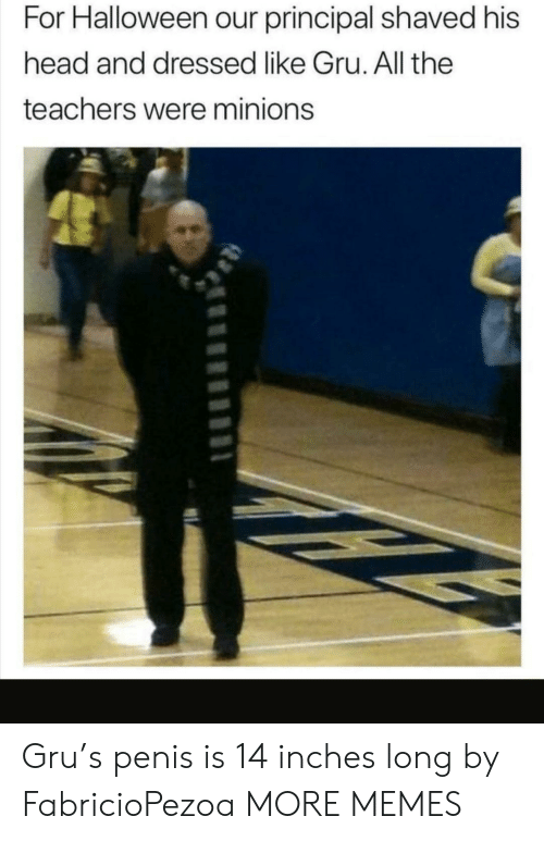 Minions: For Halloween our principal shaved his  head and dressed like Gru. All the  teachers were minions Gru's penis is 14 inches long by FabricioPezoa MORE MEMES