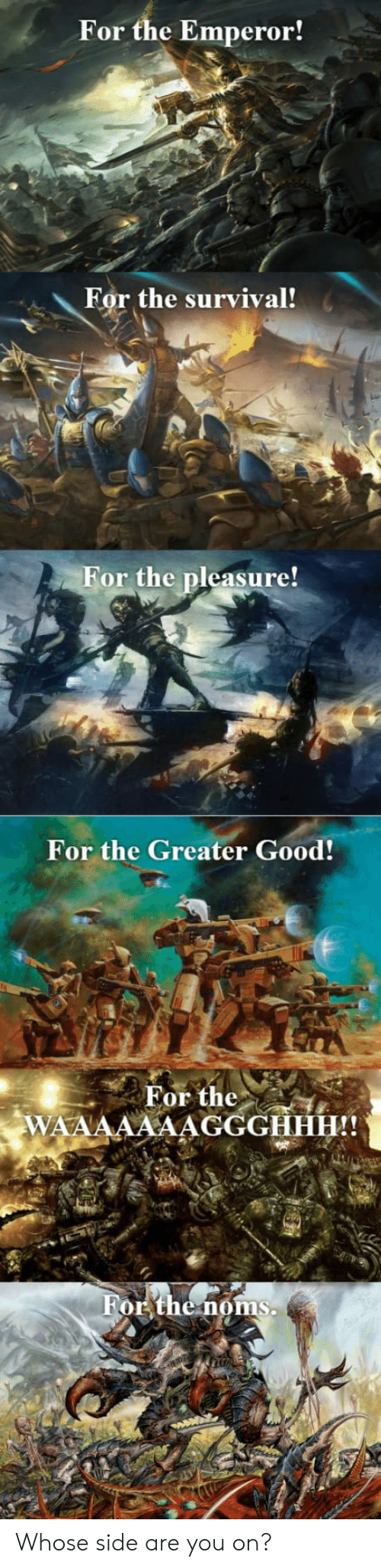 The Emperor: For the Emperor!  For the survival!  or the pleasure!  For the Greater Good!  For the.  WA Whose side are you on?