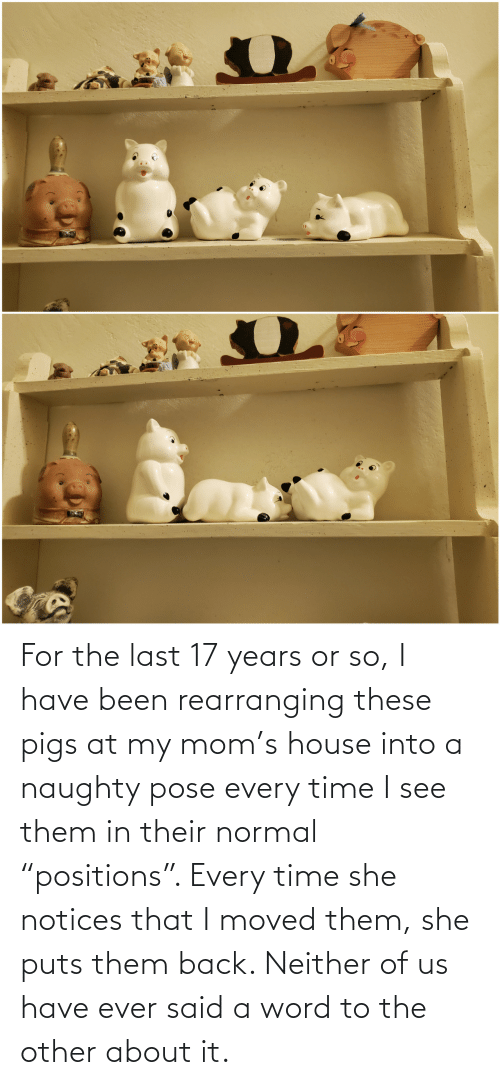 """Positions: For the last 17 years or so, I have been rearranging these pigs at my mom's house into a naughty pose every time I see them in their normal """"positions"""". Every time she notices that I moved them, she puts them back. Neither of us have ever said a word to the other about it."""