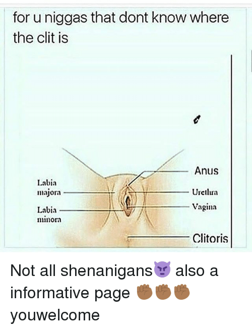 Labia rips away from clitoris have