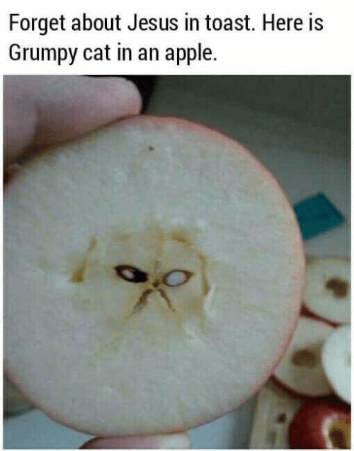 Apple, Dank, and Jesus: Forget about Jesus in toast. Here is  Grumpy cat in an apple.