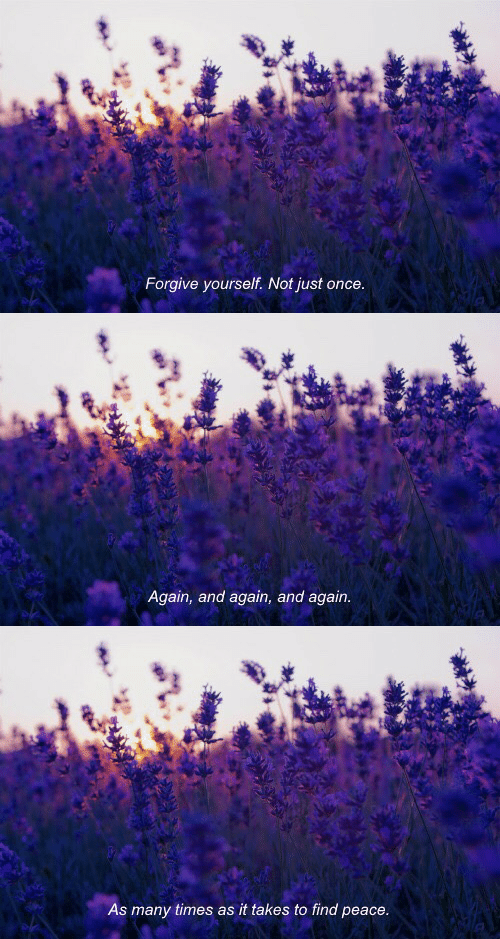 Peace, Once, and Times: Forgive yourself. Not just once   Again, and again, and again.   As many times as it takes to find peace.