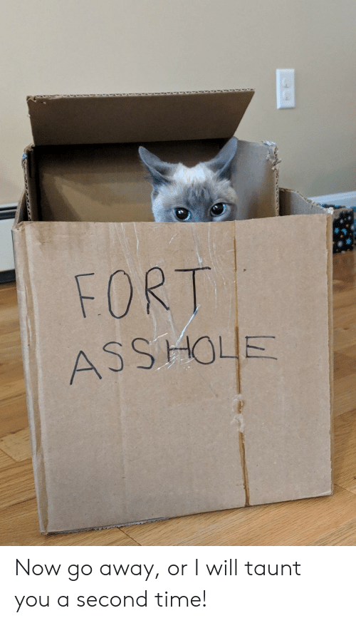 taunt: FORT  ASS HOLE Now go away, or I will taunt you a second time!
