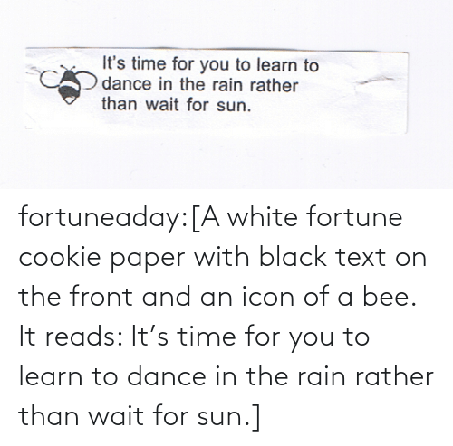 Text: fortuneaday:[A white fortune cookie paper with black text on the front and an icon of a bee. It reads: It's time for you to learn to dance in the rain rather than wait for sun.]