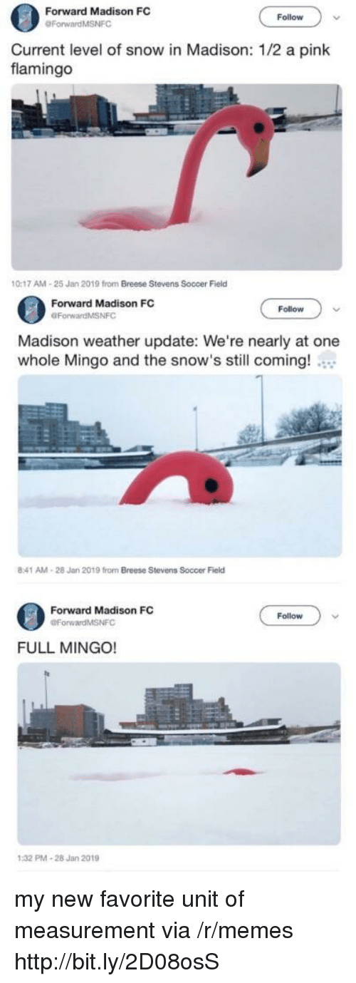 measurement: Forward Madison FC  Follow  Current level of snow in Madison: 1/2 a pink  flamingo  0:17 AM-25 Jan 2019 from Breese Stevens Soccer Field  Forward Madison FC  OForwardMSNFC  Follow  Madison weather update: We're nearly at one  whole Mingo and the snow's still coming!  8:41 AM-28 Jan 2019 from Breese Stevens Soccer Field  Forward Madison FC  Follow  FULL MINGO!  PMA-28 Jan 2019 my new favorite unit of measurement via /r/memes http://bit.ly/2D08osS