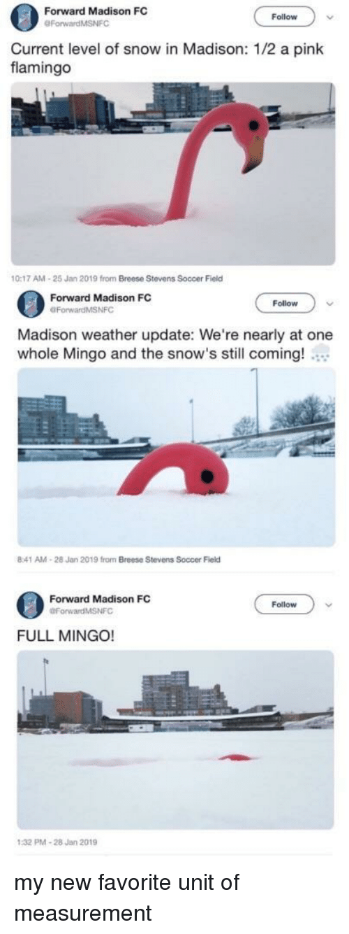 measurement: Forward Madison FC  Follow  Current level of snow in Madison: 1/2 a pink  flamingo  0:17 AM-25 Jan 2019 from Breese Stevens Soccer Field  Forward Madison FC  OForwardMSNFC  Follow  Madison weather update: We're nearly at one  whole Mingo and the snow's still coming!  8:41 AM-28 Jan 2019 from Breese Stevens Soccer Field  Forward Madison FC  Follow  FULL MINGO!  PMA-28 Jan 2019 my new favorite unit of measurement