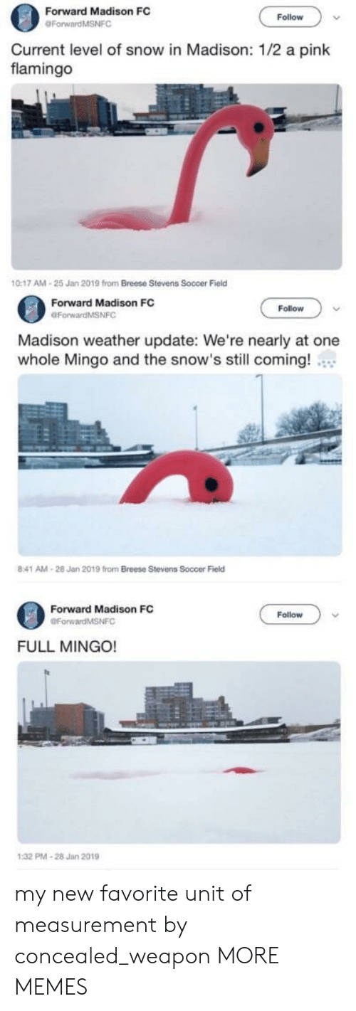 measurement: Forward Madison FC  Follow  Current level of snow in Madison: 1/2 a pink  flamingo  0:17 AM-25 Jan 2019 from Breese Stevens Soccer Field  Forward Madison FC  OForwardMSNFC  Follow  Madison weather update: We're nearly at one  whole Mingo and the snow's still coming!  8:41 AM-28 Jan 2019 from Breese Stevens Soccer Field  Forward Madison FC  Follow  FULL MINGO!  PMA-28 Jan 2019 my new favorite unit of measurement by concealed_weapon MORE MEMES