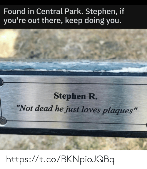 """Memes, Stephen, and 🤖: Found in Central Park. Stephen, if  you're out there, keep doing you.  Stephen R.  """"Not dead he just loves plaques"""" https://t.co/BKNpioJQBq"""