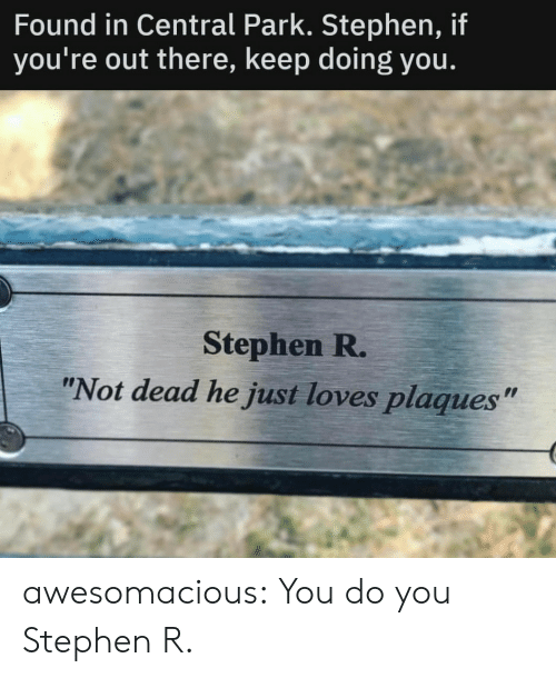 """Youre Out: Found in Central Park. Stephen, if  you're out there, keep doing you.  Stephen R.  """"Not dead he just loves plaques"""" awesomacious:  You do you Stephen R."""