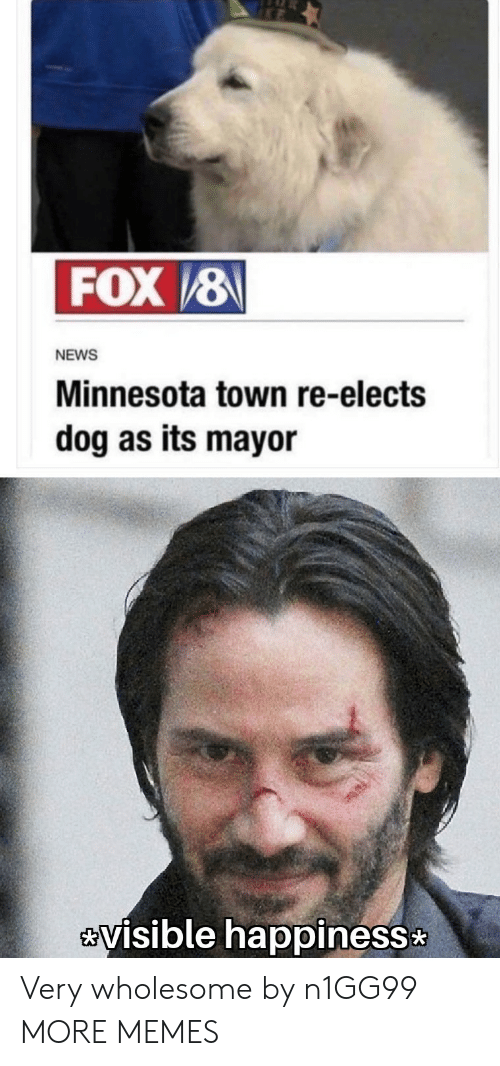Minnesota: FOX/8  NEWS  Minnesota town re-elects  dog as its mayor  visible happiness Very wholesome by n1GG99 MORE MEMES