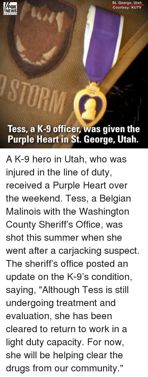 """Belgian: FOX  NEWS  St. George, Utah  Courtesy: KUTV  RIM  Tess, a K-9 officer, was given the  Purple Heart in St. George, Utah. A K-9 hero in Utah, who was injured in the line of duty, received a Purple Heart over the weekend. Tess, a Belgian Malinois with the Washington County Sheriff's Office, was shot this summer when she went after a carjacking suspect. The sheriff's office posted an update on the K-9's condition, saying, """"Although Tess is still undergoing treatment and evaluation, she has been cleared to return to work in a light duty capacity. For now, she will be helping clear the drugs from our community."""""""